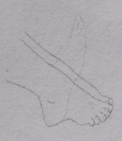 Oesto-3-8.jpg