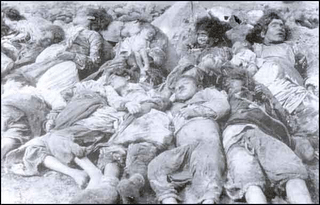 Dead bodies2