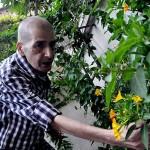 ostadmohamad_624x351_mehr-150x150 محمود استاد محمد اولین هنرمند قربانی تحریم «هوشمند»