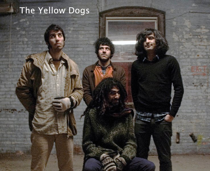 The-Yellow-Dogs