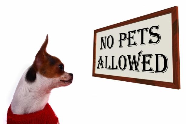 قوانین مربوط به مالک و مستأجر در املاک مسکونی