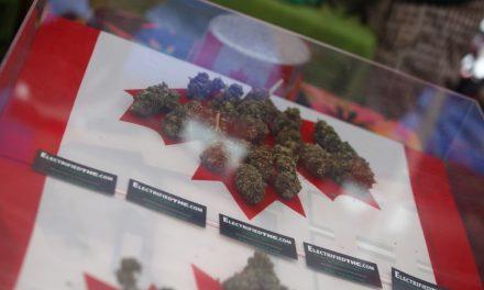 قانونی شدن ماریجوآنا برای وضع مقررات بیشتر