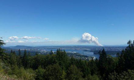 آتش در زمینهای باتلاقی غرب شهر دلتا به آسمان مترو ونکوور رنگ و طعم دود داد