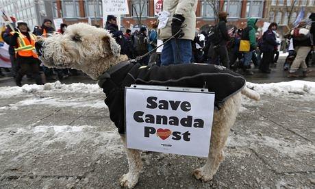 Canada-Post-dog-protest-O-011
