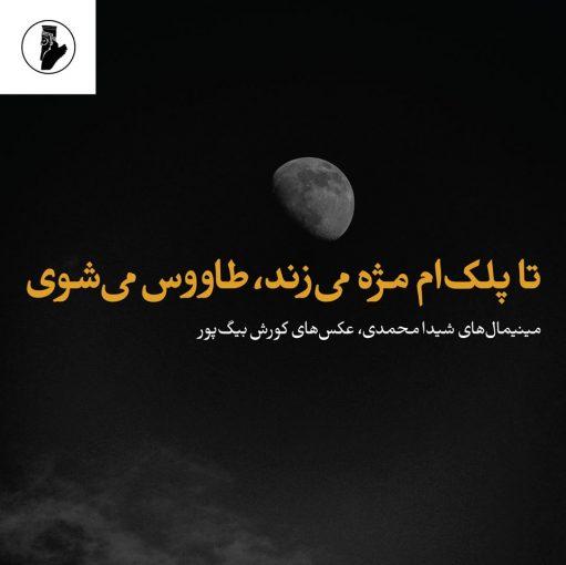 هشت شعر کوتاه از شیدا محمدی