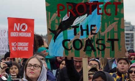 آری یا خیر: دولت فدرال، مخالفان و موافقان خطوط انتقال نفت