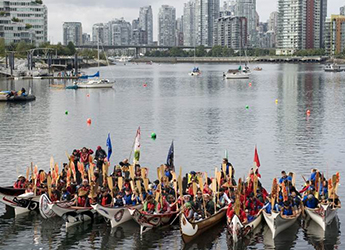 paddlers-in-harbour-345-250