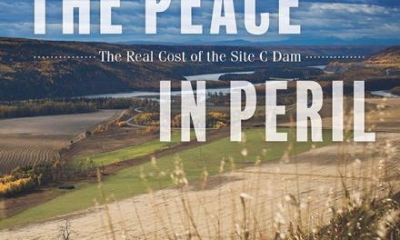 آنچه ساخت سد بر دره رودخانه صلح غرق میکند