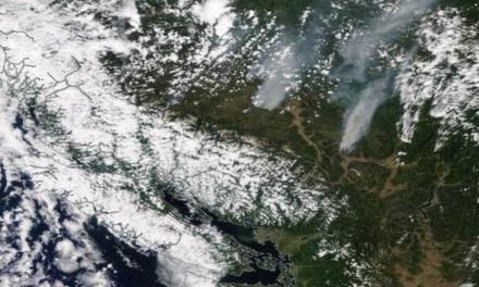 آلبوم عکس: تصویرهای ناسا از آتشسوزیهای بیسی