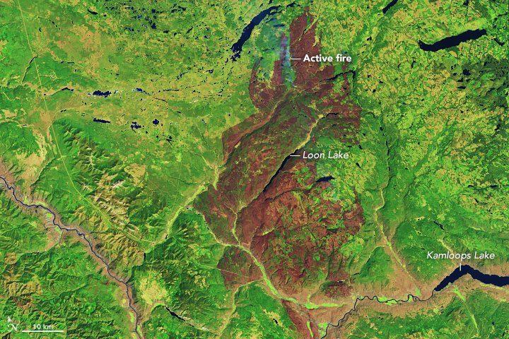 تولید ۱۹۰ میلیون تن گازهای گلخانهای بر اثرآتشسوزیهای جنگل در بریتیش کلمبیا