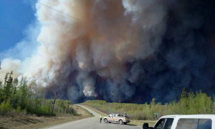 آتش در منابع طبیعی، پیام بیدار کننده تغییرات اقلیمی است