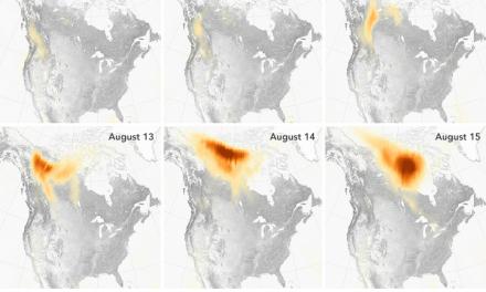 گران، گسترده، پر دود: رکوردهای تابستانی آتش
