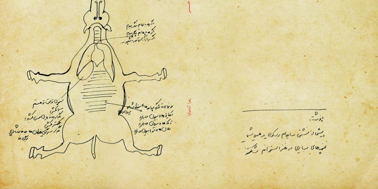 خوانشی بر مجموعهٔ شعر «خر» اثر زهرا آزادیکیا