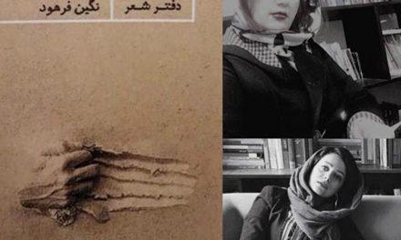 تحلیل و خوانش بر دومین مجموعه شعر نگین فرهود با نام «خطبهی خاک »